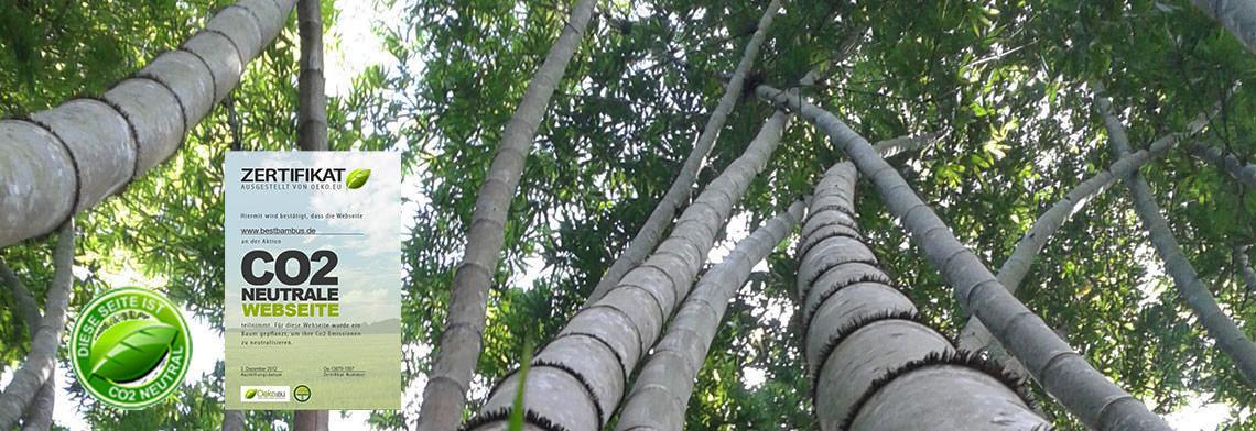 Naturprodukte aus Bambus Holz