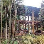 bambus-haus-bauen