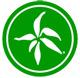 Bambus-Natur-Holz