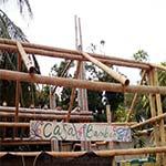 bambus-bar